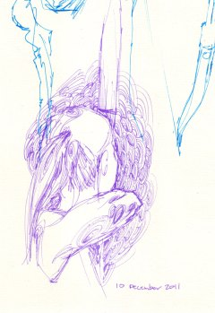 10-December-2011-Archery-TT