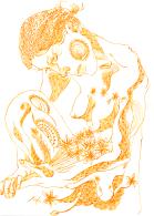 18-January-2011-Golden-Flowers