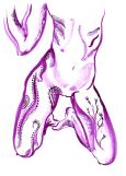 3-January-2011-Purple-Lady