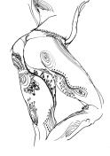 Mushroom-legs