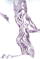 Under-Purple-Water