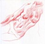 Study-of-torso-02